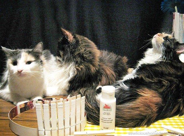kitties at sewlicioushomedecor.com