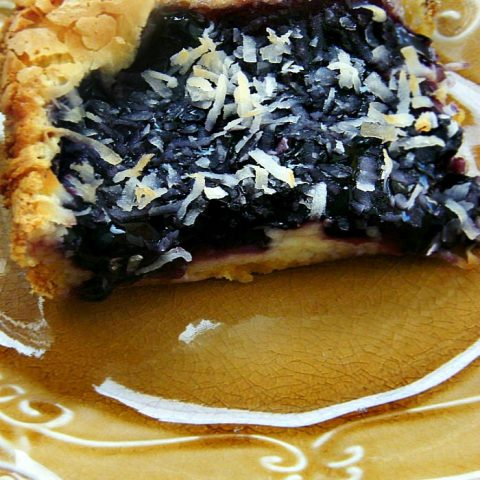 Blueberry Cheesecake Coconut Bars