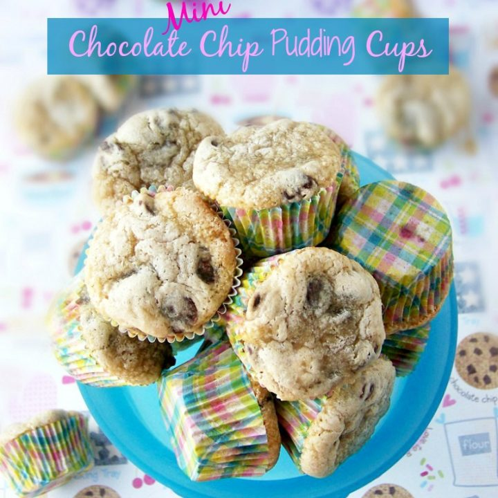 Mini Oatmeal and Pudding Chocolate Chip Cups