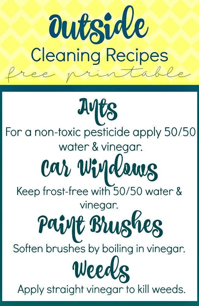 Outside Recipes with Vinegar Free Printables at sewlicioushomedecor